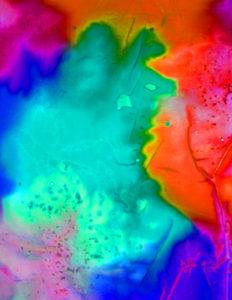 Level 1 Color Studies