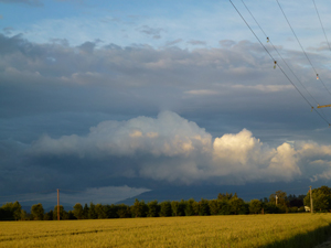 Skagit Valley skies
